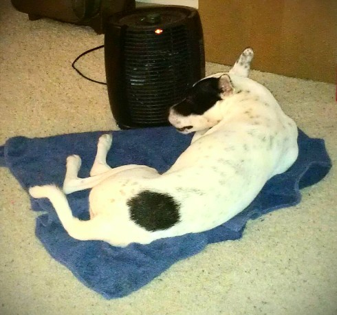 spaceheater
